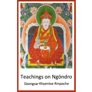 DJKR (2015) Teachings on Ngöndro, Bartsham, Bhutan