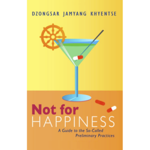 DJKR (2012) Not For Happiness 512px